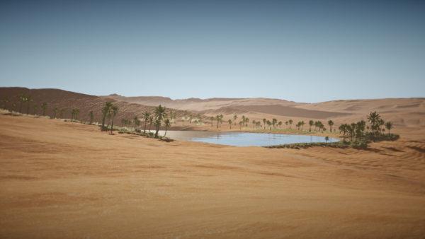 Il Deserto e l'Oasi